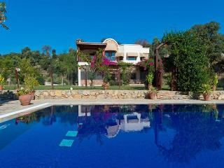 5 bedroom Villa in Bodrum, Agean Coast, Turkey : ref 2249294