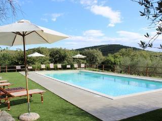 5 bedroom Villa in Castellina in Chianti, Tuscany, Italy : ref 5476947