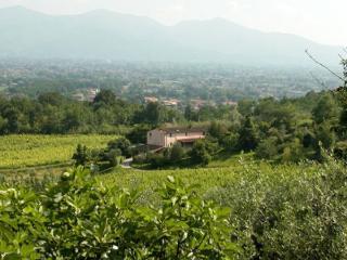Villa in Capannori, Tuscany, Italy, Matraia