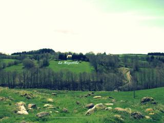 En pleine nature à 15km de Chastreix Sancy