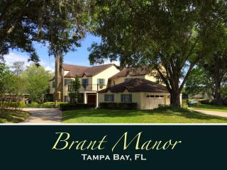 BRANT MANOR: 8 Bdrm, Lakefront Pool Home Near City, Tampa