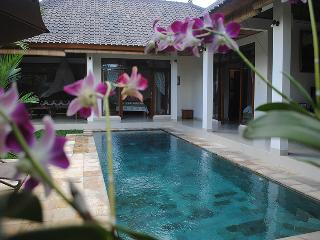 Villa Palm Merah - Stunning new villa, close2 Ubud