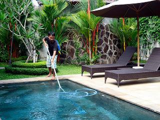 Villa Palm Merah - Stunning new villa, close2 Ubud