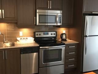 Beautiful new condo in real downtown of Montreal