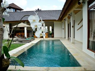 Villa Bindi - 3 bedrooms - peace, privacy, views., Ubud