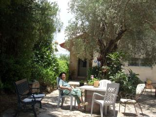 Ilana's Jerusalem Apartments - 3 bdrm apt - studio, Jerusalém