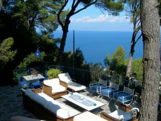 Capri: the house in the woods