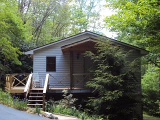 Private Mountain Cottage Close to National Forest