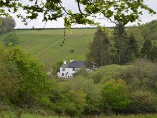 Brentor Self-Catering
