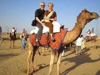 Camel Safari, holiday rental in Deshnoke