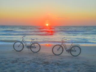Pristine, Direct Oceanfront, Pets, Sleeps 10, Vero Beach