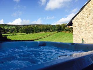 42909 Cottage in Abergavenny, Penybont
