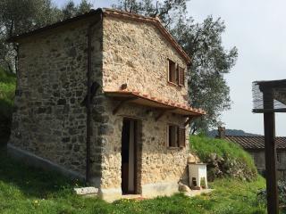 Rustico romantico nelle Seimiglia, Camaiore