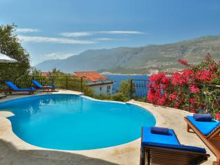 Villa Meena, large luxury 4 bedroom villa