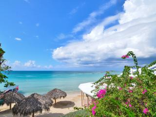 Beach House Condos - Lower Reef House, Negril