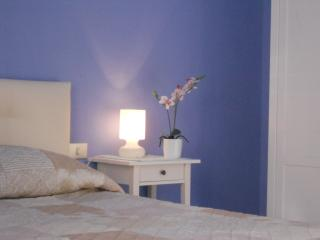 Santa Cecilia Apartment-  Charming and Peaceful-Historic Centre Pisa - WIFI -