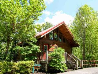 The Great Escape - Cozy Mountain Cabin - Hot Tub & Fireplace - Minutes to Downtown Gatlinburg!