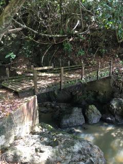 Bridge along coastal trail