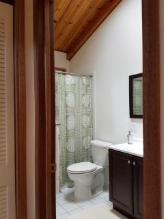 Skylit bathroom