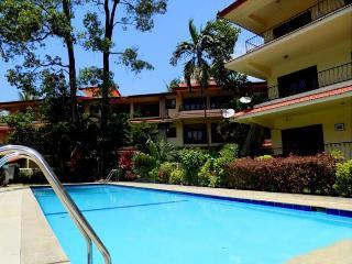 1 BHK Premium Apartment In Arpora