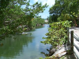 Part of the Lagoon from near the townhouse