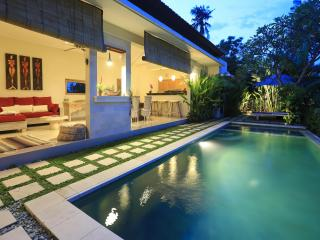 Peaceful villa w/ rice fields view, 10' to beach !, Canggu