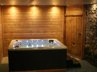 Gite le Forest type chalet station de SKI, SPA, SAUNA, BALNEO, TENNIS DE TABLE