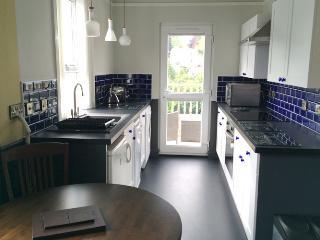 Apt 3 Nightingale kitchen and balcony