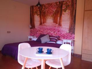 Estudio con Cama Doble y sofá Cama,, Luarca