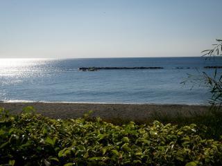 Exclusive Beach Apartment, Limassol