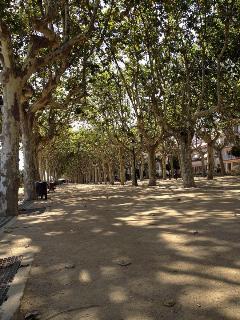 Paseo de Calella