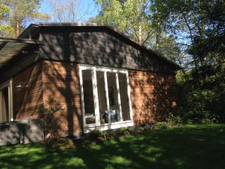 Sunny cottage on woodland park. Enjoy the birds, squirrels and rabbits in garden
