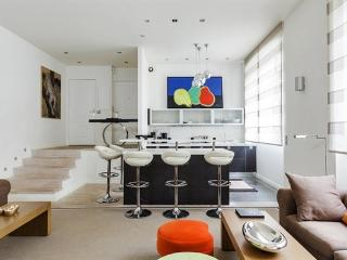 Designer two bedroom apartment in Golden Triangle, Paris