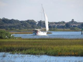 Conquistador Wetlands, Panorama Views, Eagles, ospreys, spoon bills, herons etc., Saint Augustine