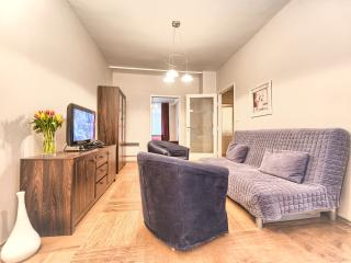 Old Town - Spacious 2bdr | National Theatre Apts., Praag