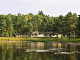 Cottage - Lodge Lac de Feyt -Vallée de la Dordogne, Argentat