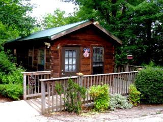 Gaestehaus Salzburg, Bluebird Cabin, Lake Lure