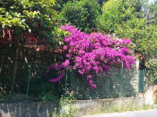 Casa indipendente immersa nel verde, Rapallo