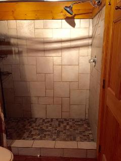 Walk-in shower with rainforest showerhead.