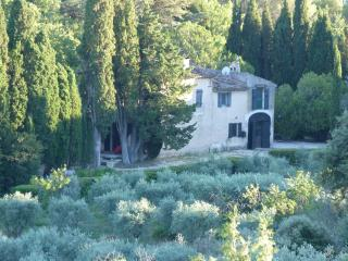 Mas de CASTEUSE , bastide de caractere, parc ,piscine,Lourmarin,Luberon,Provence