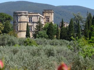 Mas de CASTEUSE , bastide de caractére, parc ,piscine,Lourmarin,Luberon,Provence