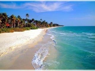 Luxury condo Naples Bay Resort