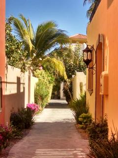 walkway to house