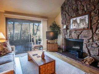 Eagle Vail Family Friendly Townhome, Easy Bus Access to Vail & Beaver Creek, Eagle-Vail