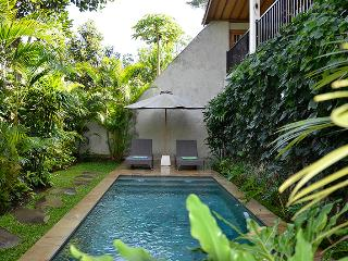 Villa Nangka - Private, tranquil, glorious views, Ubud