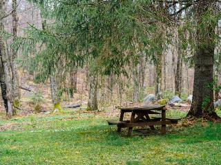 Affordable condo w/ shared hot tub, near skiing & golf - convenient location!