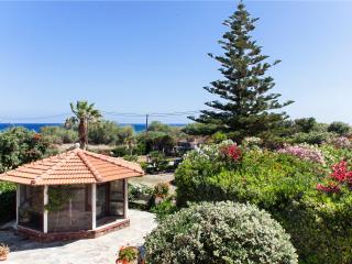 Luxury Villa Antikleia