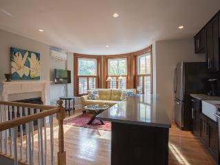 Spacious 2b/2b, two levels, high end finishes, lux, Somerville