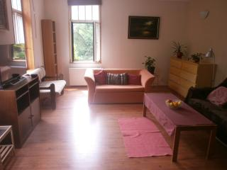 Apartment with garden and outdoor natural pool, Karlovy Vary