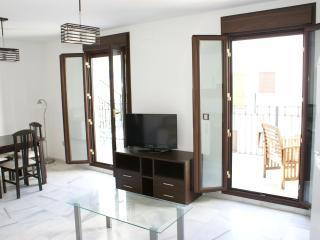 Nice last floor modern flat, 1 bedroom, Seville